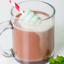 Hot Chocolate with Green Mint Frozen Pop Image